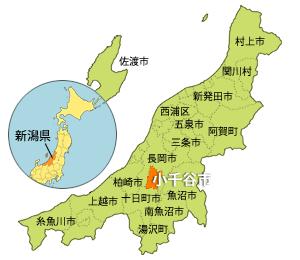 小林麻央 新潟を枝豆で思い出す!祖母の思い出の地 新潟の温泉に行くことはできるのか?