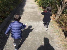 小林麻央 引っ越し場所がどこで、時期がいつなのか?引っ越しの理由に集まる注目!そこには子供思いの優しさがあった。33