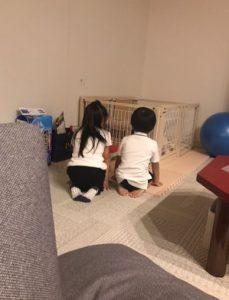 小林麻耶 海老蔵 再婚しそうという噂はゆめちゃんの海老蔵家入りで増加?誕生日会も楽しいものにしてほしい・・・