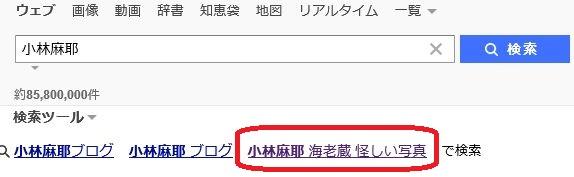 市川海老蔵 再婚相手は麻耶がいいに決まってるのか?姉との再婚について、今一度真剣に考えてみた!