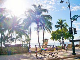 小林麻耶 ハワイで11月も目撃されてないのに、自らブログに掲載する疑問・・・