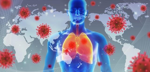 コロナウイルス 原因は何なのか?2020年3月時点で分かっていること。